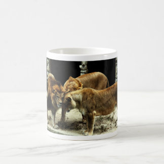 3 Lions Pushing their Heads Together Classic White Coffee Mug