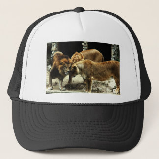 3 Lions Pushing their Heads Together Trucker Hat