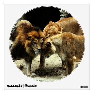 3 Lions Pushing their Heads Together Wall Sticker