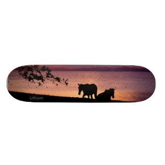 3 Lithium Skateboards