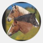3 mare heads sticker