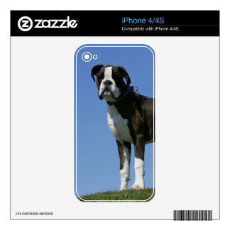 3 Month Old Boxer Puppy Skins For The iPhone 4S