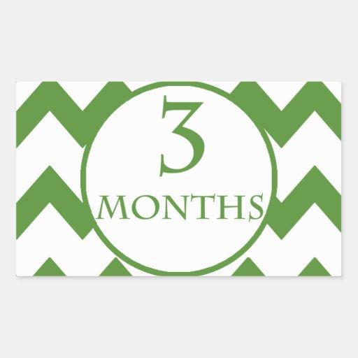 3 Months Chevron Milestone Stickers