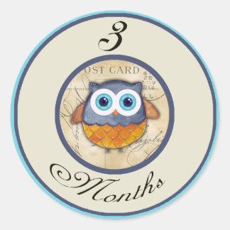 3 Months Owl Milestone Classic Round Sticker