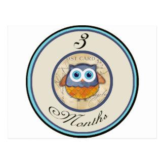 3 Months Owl Milestone Postcard