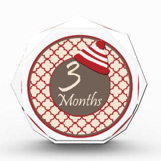 3 Months Sock Monkey Hat Milestone Award