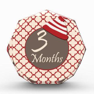 3 Months Sock Monkey Milestone Award