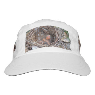 3 new born baby birds in a nest with do not remove hat