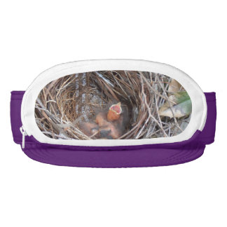 3 new born baby birds in a nest with do not remove visor