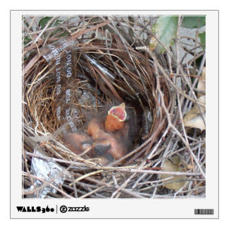 3 new born baby birds in a nest with do not remove wall sticker