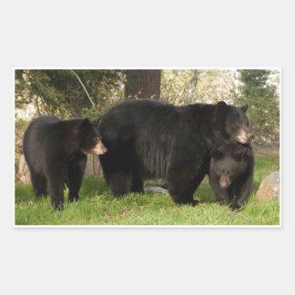 3 osos negros pegatina rectangular
