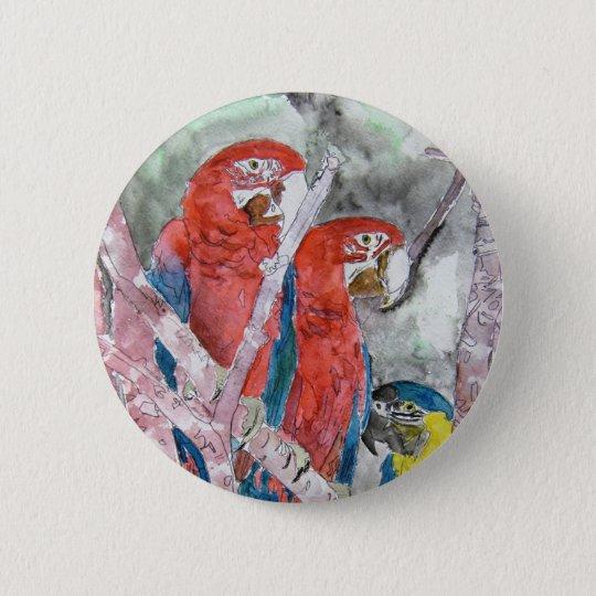 3 parrots bird animal wildlife zoo watercolor art pinback button