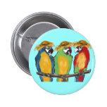 3 Parrots Pinback Button