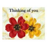 3 pensando en usted tarjetas postales