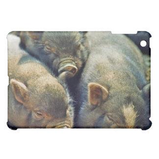 3 pequeños cerdos