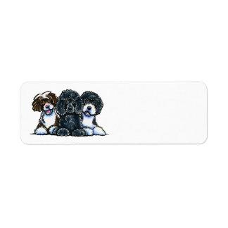 3 perros de agua portugueses etiquetas de remite