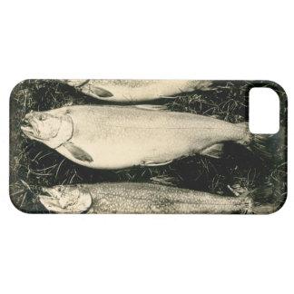 3 pescados iPhone 5 carcasas
