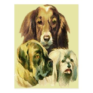 3 puppies post cards