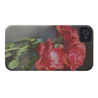 3 red roses Case-Mate iPhone 4 case