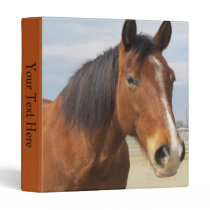 3 Ring Binder--Brown Horse Side Binder