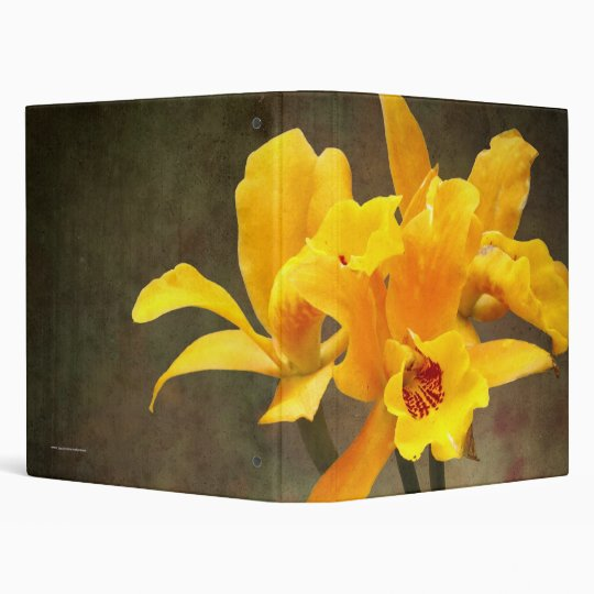 3 ring Binder with Orange Spotted Lip Cattleya Orc