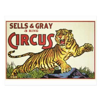 3 Ring Circus - circa 1930 Postcard