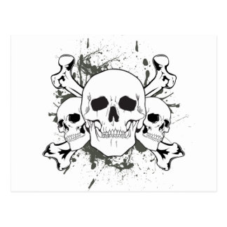3 Skulls & Cross Bones Postcard