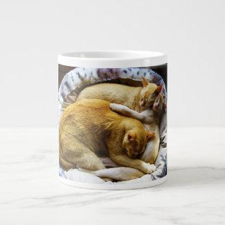3 Sleeping House Cats Felis Silvestris Catus Giant Coffee Mug
