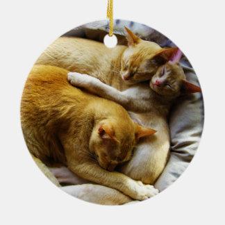 3 Sleeping House Cats Felis Silvestris Catus Ornament