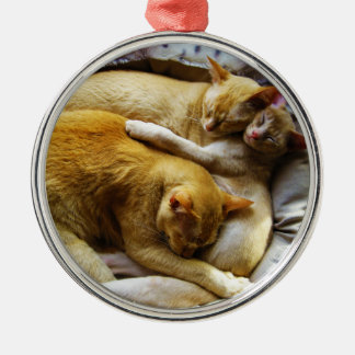 3 Sleeping House Cats Felis Silvestris Catus Christmas Ornaments
