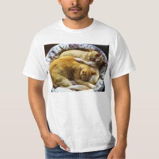 3 Sleeping House Cats Felis Silvestris Catus T-shirt