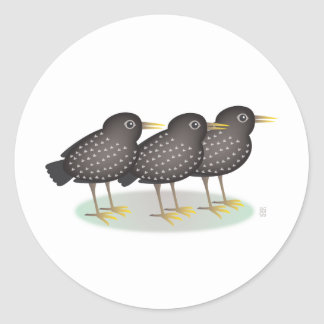 3 starlings etiquetas redondas