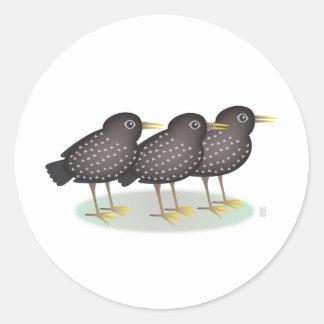 3 starlings pegatina redonda