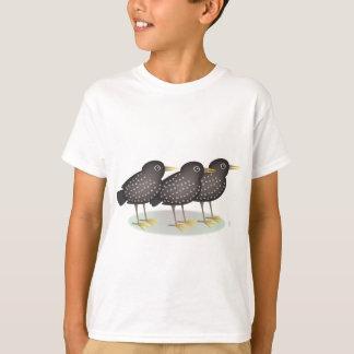 3 starlings playeras
