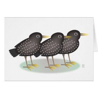 3 starlings tarjeta de felicitación