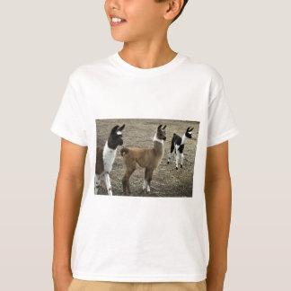 3 stooges, Llama style T-Shirt