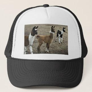 3 stooges, Llama style Trucker Hat