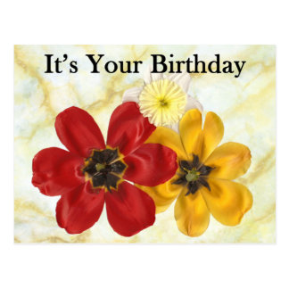 3 su su cumpleaños postal
