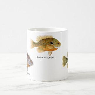 3 Sunfish on a mug