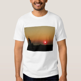#3 Sunset Race Point Light Provincetown Cape Cod T Shirt