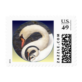 3 Swans Postage Stamp