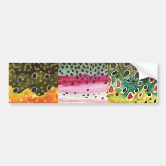 3 Trout Skins: Brook, Rainbow, Brown - Fly Fishing Bumper Sticker
