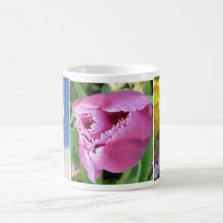 3 Tulip Collection Mug