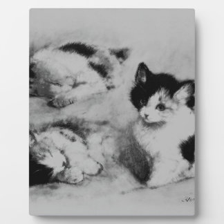 3 where the kitten wakes up display plaques