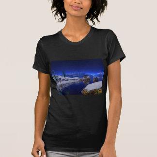 3d art the thaw t shirt