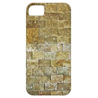 3D Brick Wall iPhone SE/5/5s Case