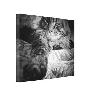 3D Cat Paw by djoneill Canvas Print
