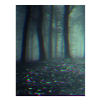 3D forest Postcard