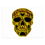 3D Gold Skull Postcard