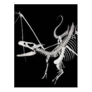 3D Halftone Flying Dragon Skeleton 2 Postcard